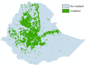Map of ethiopia showing cropland
