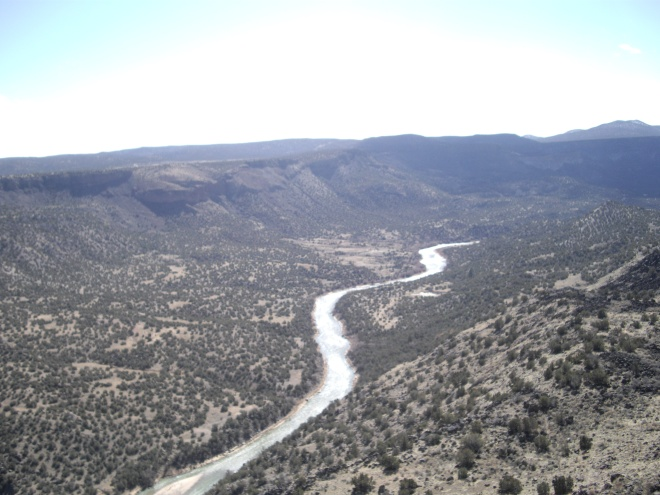 The Rio Grande River near Alberquerque, New Mexico. Credit: Luzma Fabiola Nava