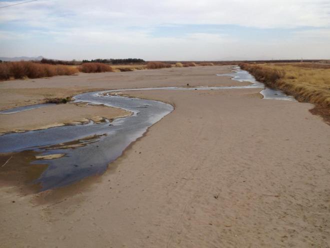 The Rio Grande River near Mesilla, New Mexico. Credit: Luza Fabiola Nava