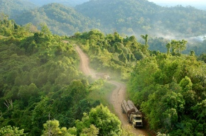 South-south cooperation for healthy, productive and sustainably managedforests